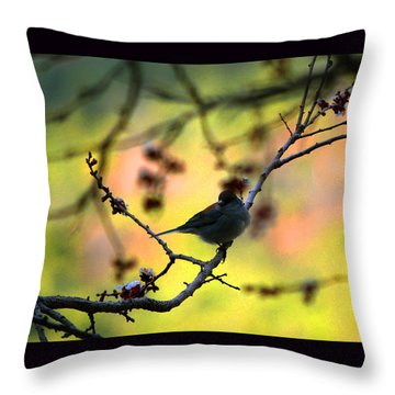 Zen Spring Throw Pillow by Susanne Still