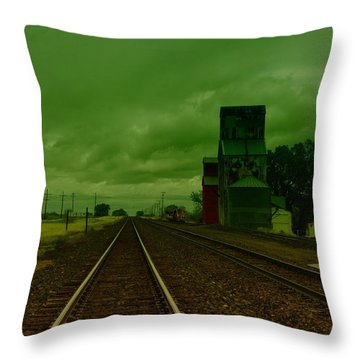 Zurich Montana Throw Pillow by Jeff Swan
