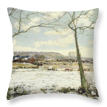 The Frozen Meadow Throw Pillow by Alexander Jamieson