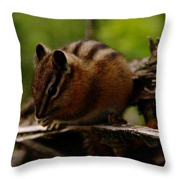A Little Chipmunk Throw Pillow by Jeff Swan