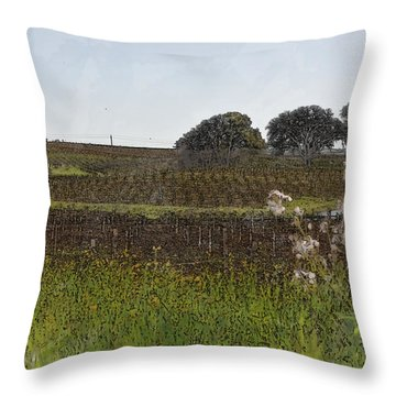 Beautiful California Vineyard Framed With Flowers Throw Pillow by Brandon Bourdages