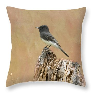 Black Phoebe Throw Pillow by Betty LaRue