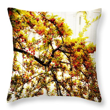 Branch Of Heaven Throw Pillow by La Rae  Roberts