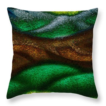 Dragon's Tale Throw Pillow by Christopher Gaston