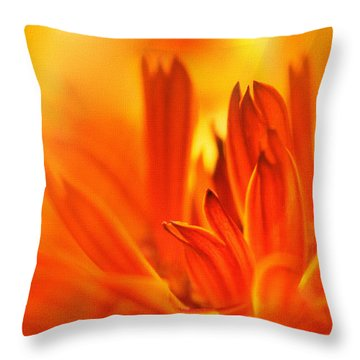 Fire Storm  Throw Pillow by Elaine Manley