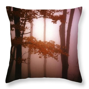 Foggy Misty Trees Throw Pillow by Mike Nellums