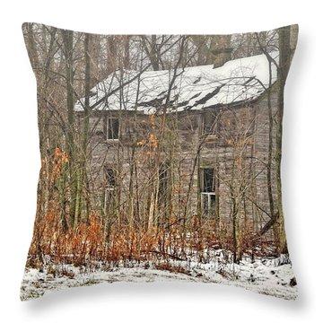 Forgotten Dreams Throw Pillow by Pamela Baker