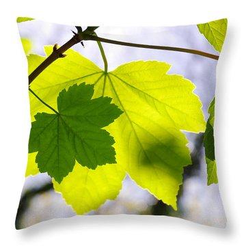 Green Leaves Throw Pillow by Carlos Caetano
