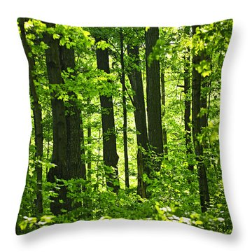 Green Spring Forest Throw Pillow by Elena Elisseeva
