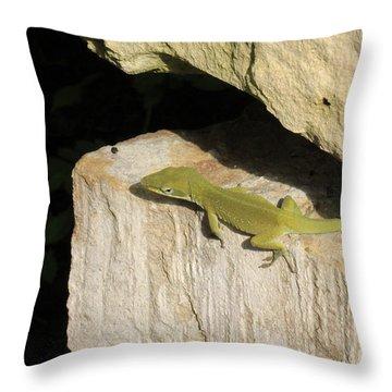 Heating Up Throw Pillow by Douglas Barnard