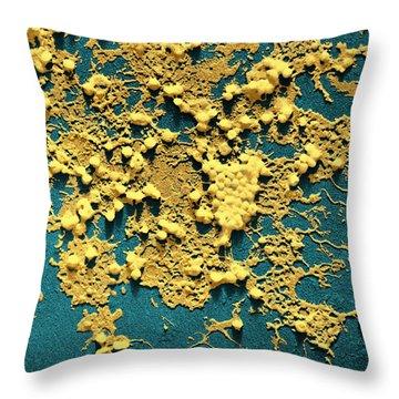 Influenza B Throw Pillow by Omikron
