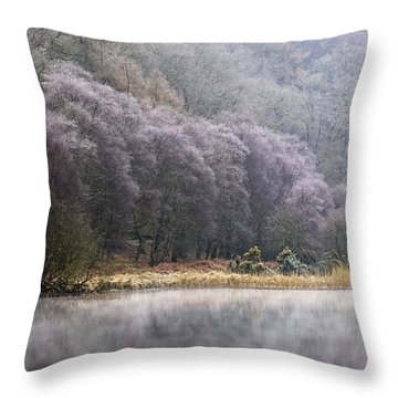 Lower Lake, Glendalough, County Throw Pillow by Peter McCabe