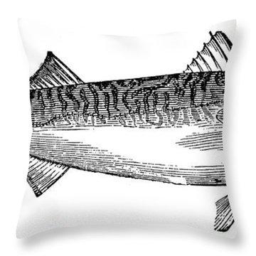 Mackerel Throw Pillow by Granger