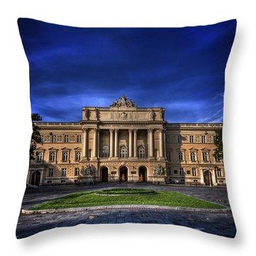 Mood Indigo Throw Pillow by Evelina Kremsdorf