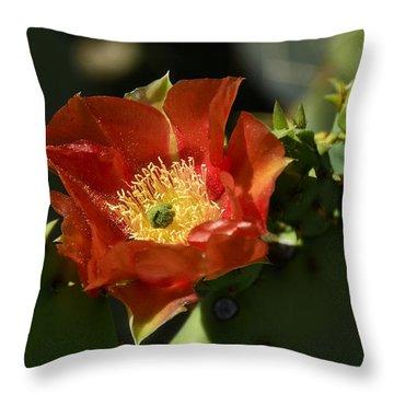Orange Prickly Pear Blossom  Throw Pillow by Saija  Lehtonen