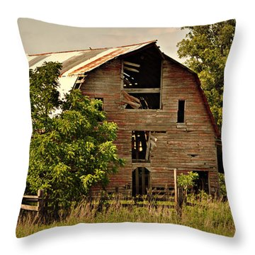 Ozark Barn Throw Pillow by Marty Koch