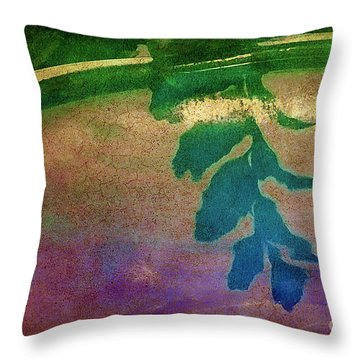 Reflection Throw Pillow by Judi Bagwell