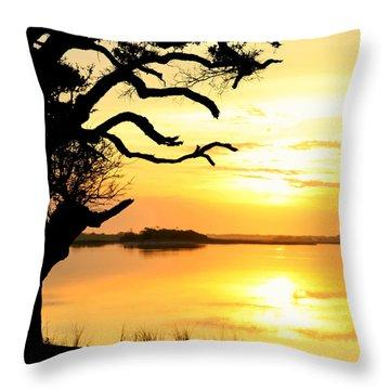 Remember When Throw Pillow by Karen Wiles