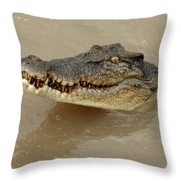 Salt Water Crocodile 3 Throw Pillow by Bob Christopher