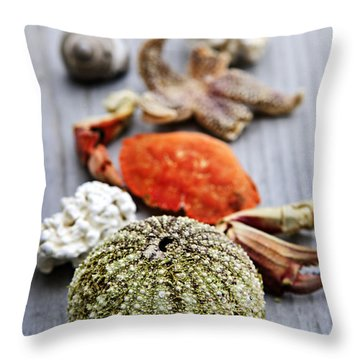 Sea Treasures Throw Pillow by Elena Elisseeva