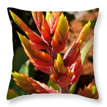 Sharp Throw Pillow by Joseph Yarbrough