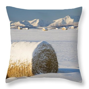 Snow-covered Hay Bales Okotoks Throw Pillow by Michael Interisano