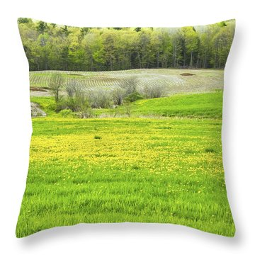 Spring Farm Landscape With Dandelion Bloom In Maine Throw Pillow by Keith Webber Jr