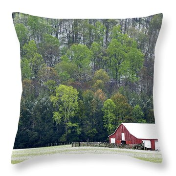 Spring Snow  Throw Pillow by Thomas R Fletcher