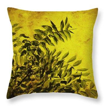 Sun Kissed Throw Pillow by Julie Hamilton