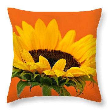 Sunflower Closeup Throw Pillow by Elena Elisseeva