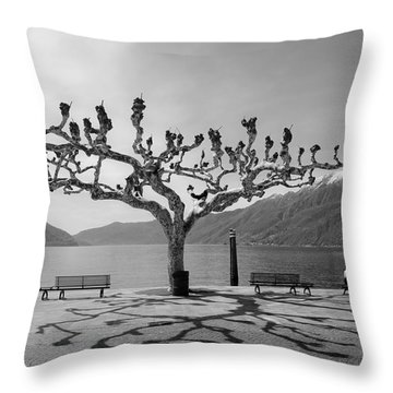 sycamore trees in Ascona - Ticino Throw Pillow by Joana Kruse