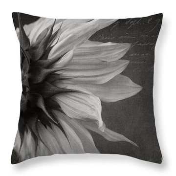 The Crossing  Throw Pillow by Sharon Mau