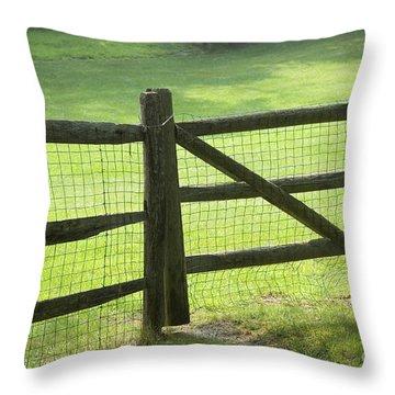 Wood Fence Throw Pillow by Tony Cordoza