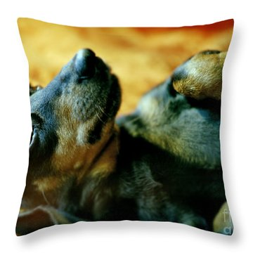 Lazy Afternoon Throw Pillow by Angel  Tarantella