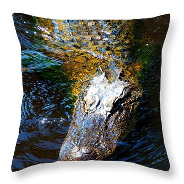 Alligator In Mississippi River Throw Pillow by Paul Ge