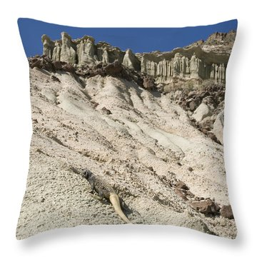 Chuckwalla Sauromalus Obesus Obesus Throw Pillow by Rich Reid