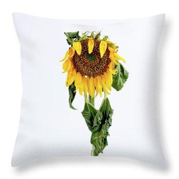 Close Up Of Sunflower. Throw Pillow by Bernard Jaubert