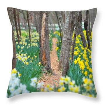Secret Places Throw Pillow by Catherine Reusch  Daley