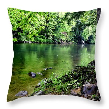 Spring Along Cranberry River Throw Pillow by Thomas R Fletcher