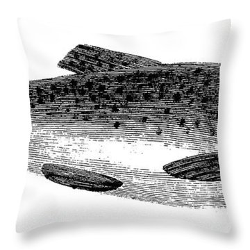 Trout Throw Pillow by Granger