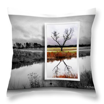 X Marks The Spot Throw Pillow by Brian Wallace