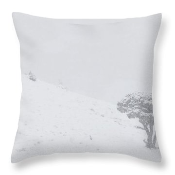 Yellowstone Park Wyoming Winter Snow Throw Pillow by Mark Duffy