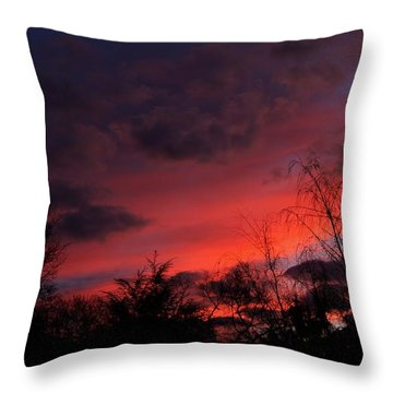 2012 Sunrise In My Back Yard Throw Pillow by Paul SEQUENCE Ferguson             sequence dot net
