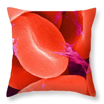 Red Blood Cells, Sem Throw Pillow by Science Source