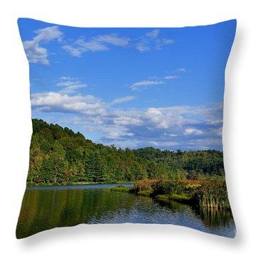 Big Ditch Lake Throw Pillow by Thomas R Fletcher