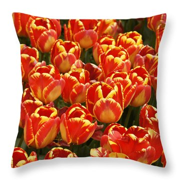 Flaming Tulips Throw Pillow by Michele Burgess