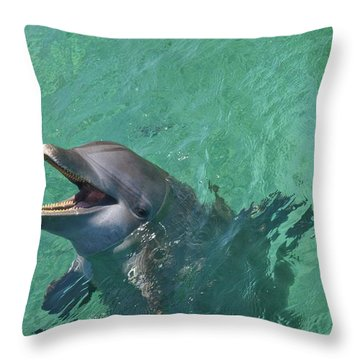 Roatan, Bay Islands, Honduras Throw Pillow by Stuart Westmorland