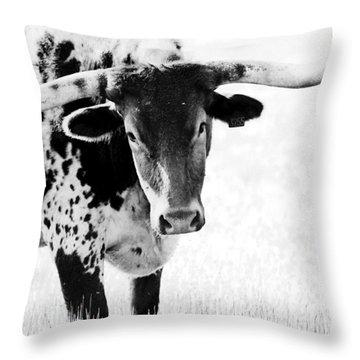 3255 Throw Pillow by Elizabeth Hart
