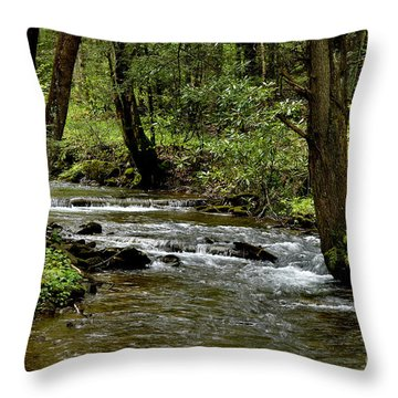 Craig Run Monongahela National Forest Throw Pillow by Thomas R Fletcher