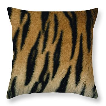 A Close View Of The Patterned Skin Throw Pillow by Michael Nichols